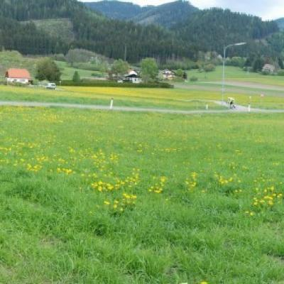 PROVISIONSFREI:2 ebene Grundstücke - Bezirk Leoben - thumb