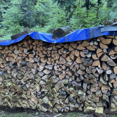 Brennholz trocken - thumb