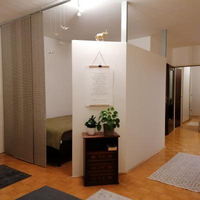 zentrale Wohnung in Linz (48m² - 2 Zimmer) mit Parkplatz - thumb