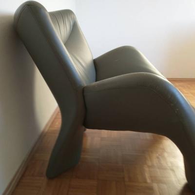 Designer-Sessel (Leolux) mit Gebrauchsspuren, EUR 60 - thumb