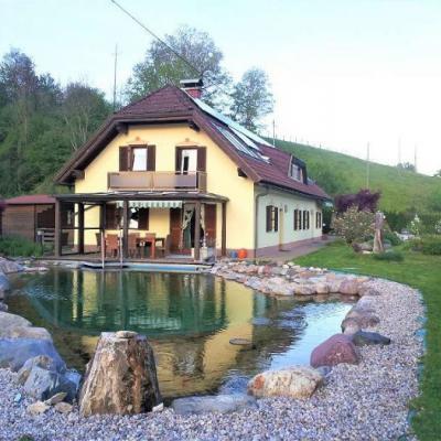 Wunderschönes Haus mit Naturpool und Sauna - thumb