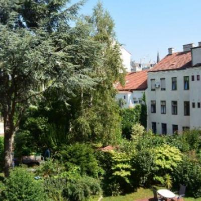 Familienwohnung / 4erWG mit Garten in AKH Nähe - thumb