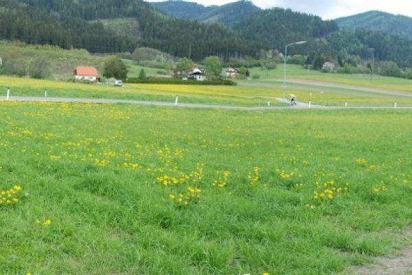 PROVISIONSFREI:2 ebene Grundstücke - Bezirk Leoben