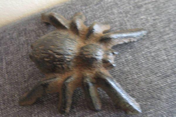 Spinne - Gusseisen - Tarantel - Spider - Deko - Vogelspinne