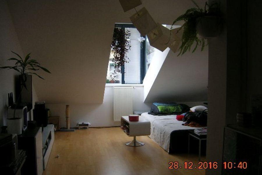 Dachterrassenwohnung U3-Nähe tolle Infrastruktur - Bild 3