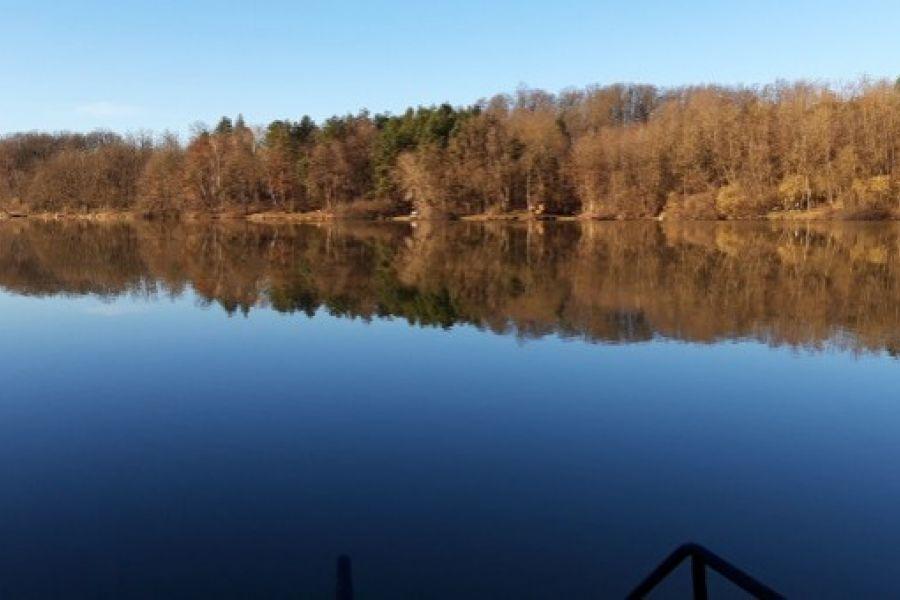 See Grundstück Top Lage in Ungarn Bernstein See . - Bild 1